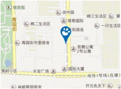 石家庄贝乐学科英语广安培训中心